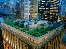 Green-Roof-Building-In-Chicago